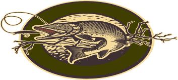 Fish North