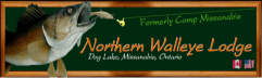 Northern walleye